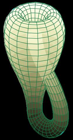 250px-Klein_bottle.svg