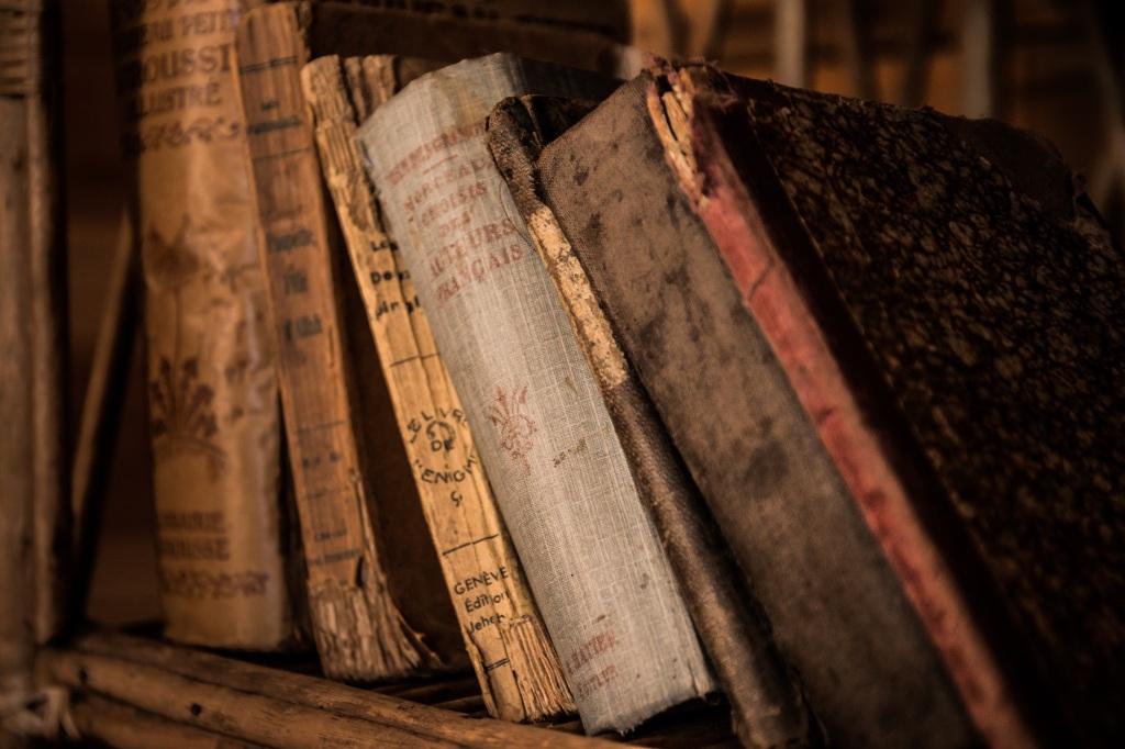 Ciascun libro diversamente inclinato, determina una diversa giacitura. (Foto Pixabay, ph. jarmoluk)
